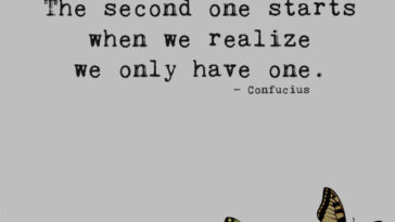 We all have two lives. The second one starts when we realize we only have one. — Confucius