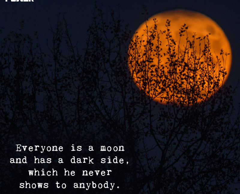 everyone is a moon