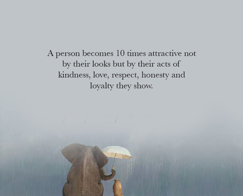 A Person Becomes 10 Times Attractive Not By Their Looks