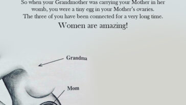 Did You Know That Your Grandmother Carried Part Of You Inside Her Womb