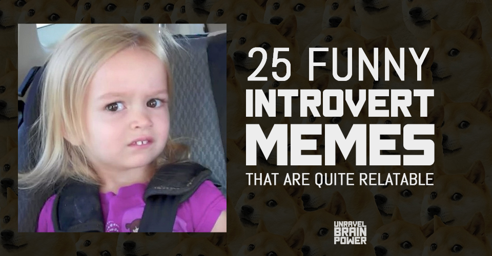 25 Funny Introvert Memes That Are Quite Relatable