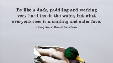 Be Like A Duck, Paddling And Working Very Hard Inside The Water, But